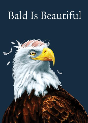 - Tree Free Greetings Bald is Beautiful Funny Birthday Cards, 2 Card Set, Bald Eagle, Multicolored (14204)