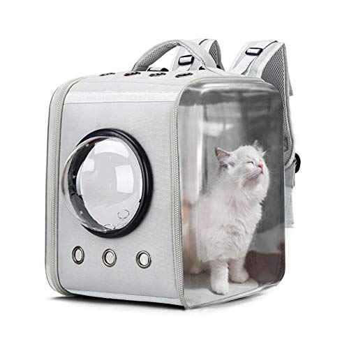 QKEMM Hundetasche Hundetasche Tragetasche Katzentasche Out Schultern Tragbare Transparente Reise für Hundetransportbox…