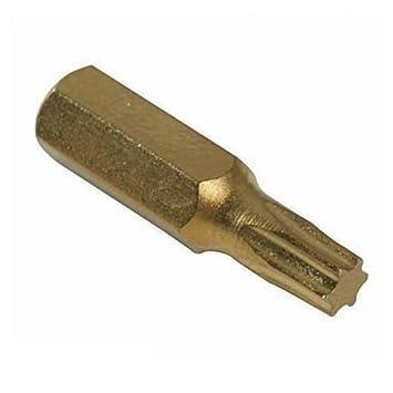 PIKE & Co. ® Branded [bul1732] dorado Torx puntas de ...