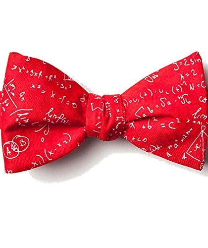 Mens Red Microfiber Math Mathematics Equations Butterfly Self Bow Tie