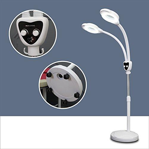 ZGP $Floor Lights 8X New Folding LDD Floor Lamp Magnifying Glass Reading Light Beauty Tattoo Professional Lights Fill Light (Edition : Pulley) -