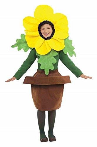 Costumes Inchiriat Pentru Copii Legume - Forum Novelties Sunny Blossom Costume, One