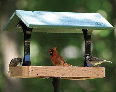 Fly Thru Bird Feeder For Sale
