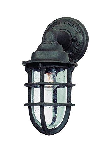 Troy Lighting Outdoor Light Fixtures - 1