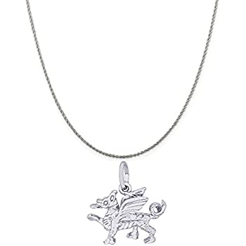 18 or 20 inch Rope Box or Curb Chain Necklace Rembrandt Charms Two-Tone Sterling Silver Ferris Wheel Charm on a Sterling Silver 16