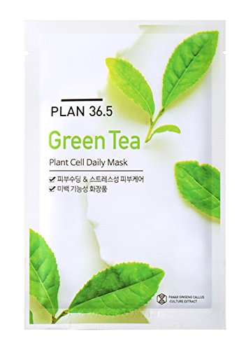 Plan 36.5 Green Tea Plant Cell Daily Facial Mask 23ml - Pack