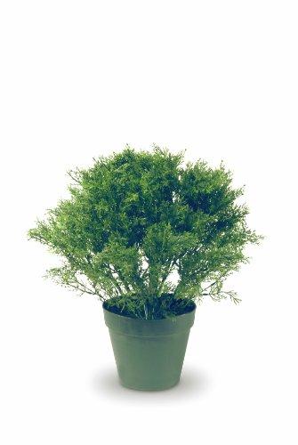 National Tree 20 Inch Juniper Tree in Dark Green Round Plastic Pot (LCB4-20)