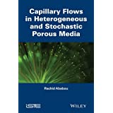 Capillary Flows in Heterogeneous and Random Porous Media (Focus)