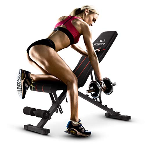 FLYBIRD Adjustable Bench,Multi-Purpose Foldable Incline/Decline Bench (Black)