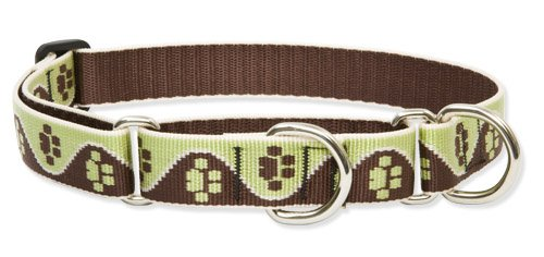 LupinePet 1-Inch Mud Puppy 19-27-Inch Martingale Combo Collar for Large Dogs Lupine 1' Puppy