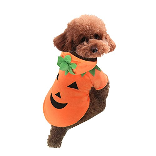 WWYSB Pet Durable Fleece Halloween Costume Pumpkin Pooch Hooded Dog Cat Clothes Orange (XS) (Custom Halloween Costumes For Dogs)