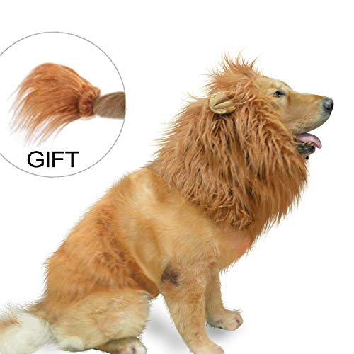 Amazing Couples Costumes (IN HAND Dog Lion Mane,Funny Lion Mane for Dogs,Lion Mane Costumes, Lion Wig for Medium to Large Dogs, Lion Mane Wig for)