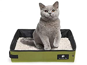 4. Misyue Green Portable Litter Box for Cats