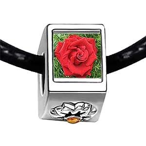Chicforest Silver Plated Red Rose Photo Topaz Crystal November Birthstone Flower Charm Beads Fit Pandora Chamilia Biagi Charm Bracelet