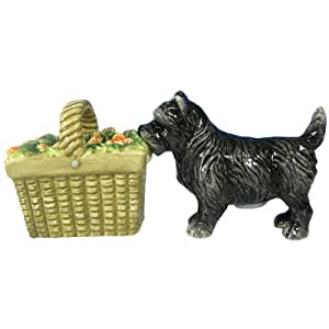 Westland Giftware Wizard of Oz Magnetic Toto and Basket Salt and Pepper Shaker Set, 2-1/2-Inch