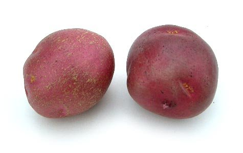 small-red-potato-artificial-vegetable-fake-food-bag-of-24