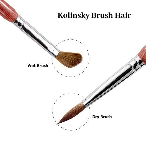 PHOEBE Acrylic Nail Brush for Acrylic Powder (Size 8) 100% Pure Kolinsky Sable Acrylic Nail Brush with Red Wood Handle Professional Nail Art Brush