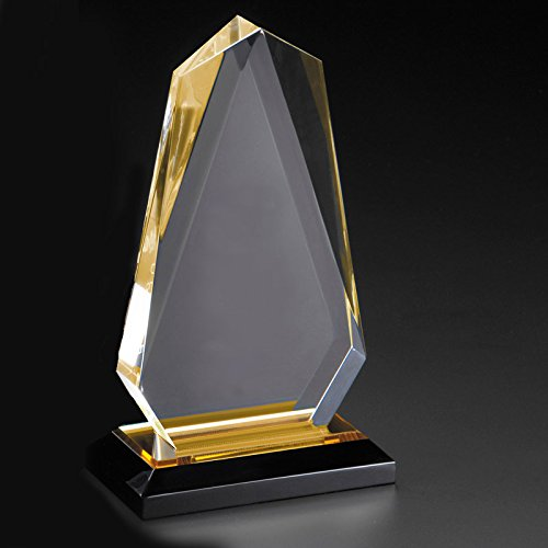 (Customizable 7-3/4 Inch Gold Arrow Head Acrylic Award, Includes Personalization)