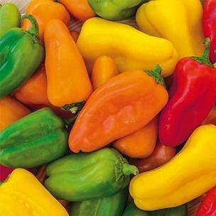 hazzards-seeds-pepper-sweet-specialty-yum-yum-mix-100-seeds