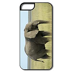 IPhone 5 5S Cases, African Elephant Namibia White/black Case For IPhone 5/5S