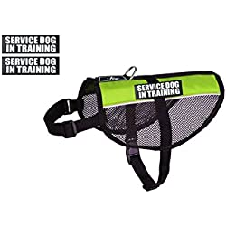 Service Dog in Training mesh Vest Dog Harness Cool Comfort. Purchase Comes with 2 Reflective Service Dog in Training Patches. Be Sure to Measure Your Dog Before Ordering