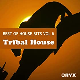 Best of house bits vol 6 tribal house for Best tribal house