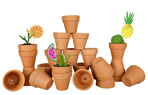My Urban Crafts 24 Pcs - 2 inch Small Mini Clay Pots Terracotta Pot Ceramic Pottery Planter Terra Cotta Flower Pot Succulent Nursery Pot - Great for Windowsill, Cactus, Plants, Crafts, Wedding Favors ()