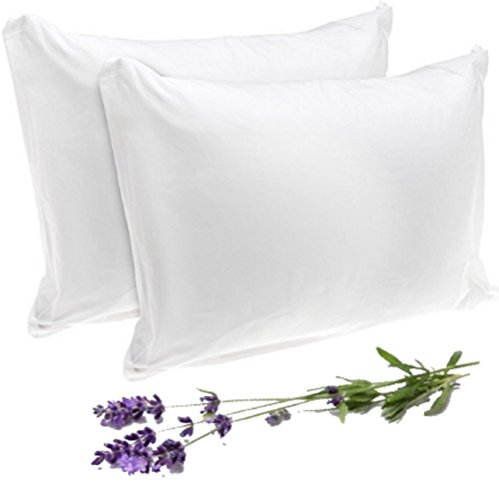SERENDIPlicity Bed Bug Pillow Protectors Zippered Standard - Premium Waterproof Allergy Pillow Covers with Zip Closure for Sleeping - Eco-Friendly