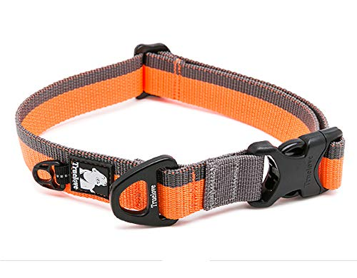 Clumsypets Dog Collar with Buckle Adjustable Safety Thick & Strong Nylon Collars &Supplies and Accessories for Dogs Small Medium Large Black/Gray, Red, Orange/Gray, Neon Yellow/Gray (S, Orange/Gray)
