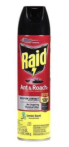 (Raid Ant & Roach Killer Aerosol Lemon 17.5 oz. Pack of 4)