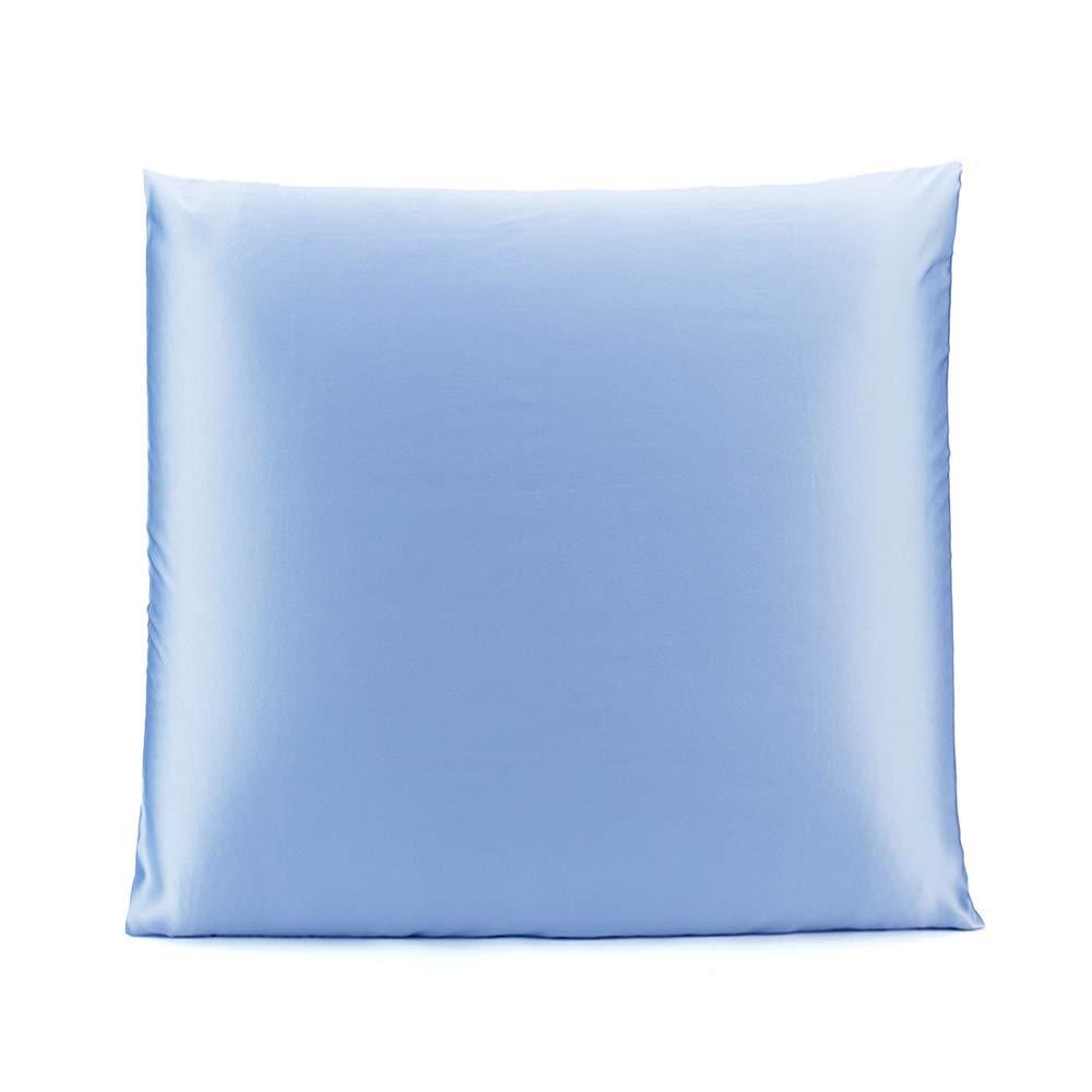 OLESILK 100% Seide Kissenbezug Kissenhülle Haar- und Hautpflege mit Verstcktem Reißverschluss 19 Momme 1 Stück Taupe 50×70cm