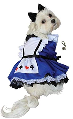 Puppe Looking Glass Alice Wonderland Dress Costume with Tea Cup Themed Charm and Bow Headpiece for Dogs - Size (Medium - Chest 16-18.5