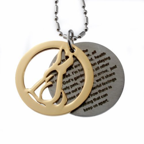 Amazon stainless steel pendant dog memorials double round stainless steel pendant dog memorials double round tag im following the path god set mozeypictures Gallery