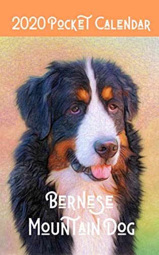 2020-Pocket-Calendar-Bernese-Mountain-Dog-Mini-Daily-Weekly-Monthly-Yearly-Planner-for-Bernese-Mountain-Dog-Owner-Lovers
