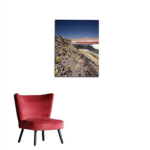 longbuyer Wall Sticker Decals Flamingos at The Colourful Laguna Colorada on The Altiplano high Plateau Bolivia Mural 16