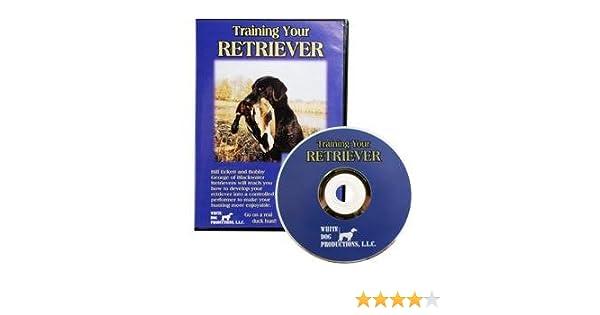 Amazon com: TRAINING YOUR RETRIEVER DVD: Movies & TV