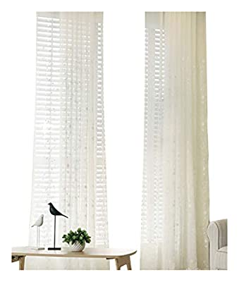 Aside Bside Sheer Curtains Exquisite Floral Embroidered Voile Treatments Pastoral Style Rod Pocket Panels for Living Room & Bedroom