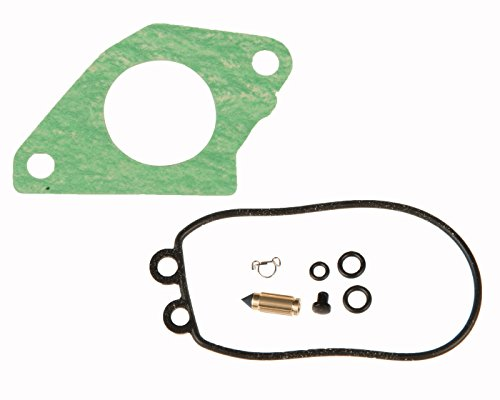 (Sierra International 18-7050 Carburetor Kit Boat Engine Parts)