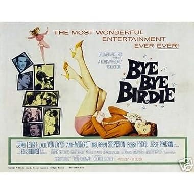 BYE BYE Birdie Movie Poster Ann Margret Rare Vintage 3