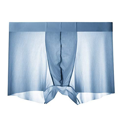 (Breathable Ice Silk Mens Fashion Underwear Silk Non-Slip Thin Pouch Underpants Light Blue)