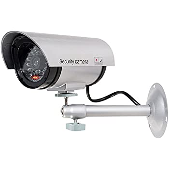 WALI Bullet Dummy Fake Surveillance Security CCTV Dome Camera Indoor Outdoor with One LED Light, Warning Security Alert Sticker Decals (TC-S1), Silver