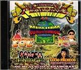 Cumbias Peruanas Sonido Sonoramico