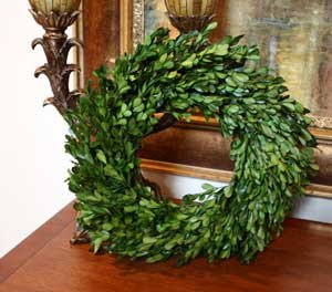 Preserved Garden Boxwood Wreath 14'' by Flora Decor