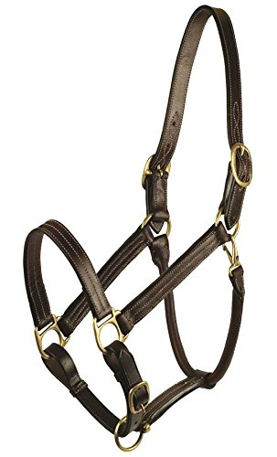 GATSBY LEATHER COMPANY 283029 Classic Adjustable Halter Havanna Brown, Large Horse ()