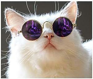 BWLZSP 1 UNIDS Mascotas anteojos de Gato anteojos para Perros Gafas de Sol geniales anteojos de