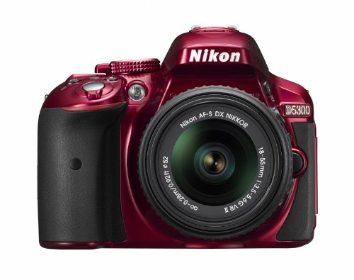 D5300 24.2 MP CMOS Digital SLR Camera with 18-55mm f/3.5-5.