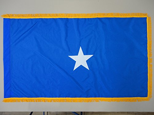 U.S. Air Force 1-Star Brigadier General Indoor Outdoor Appliqued Nylon Flag Lined Pole Hem and 2