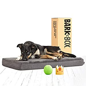 BarkBox Memory Foam Platform Dog Bed | Plush Mattress for Orthopedic Joint Relief | Machine Washable Cuddler with Removable Cover and Waterproof Lining | Includes Squeaker Toy 1