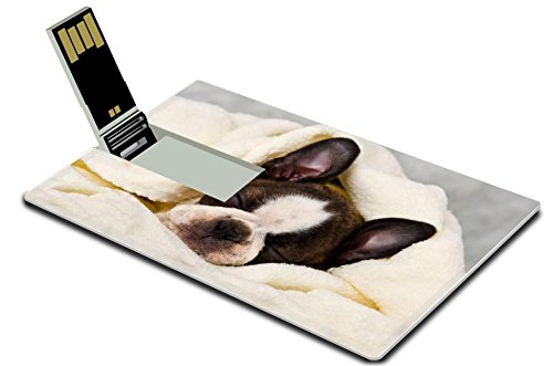 (Luxlady 32GB USB Flash Drive 2.0 Memory Stick Credit Card Size Boston terrier sleeping in white towels studio shoot IMAGE 20130004)