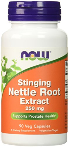 NOW Nettle Extract 250mg Capsules product image